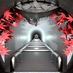 What Lies Underground