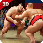 Sumo Stars Wrestling 2018